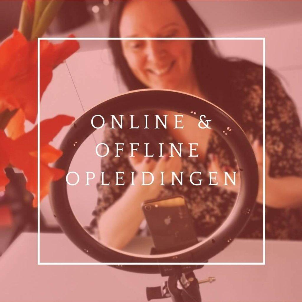 Icommit online en offline opleidingen