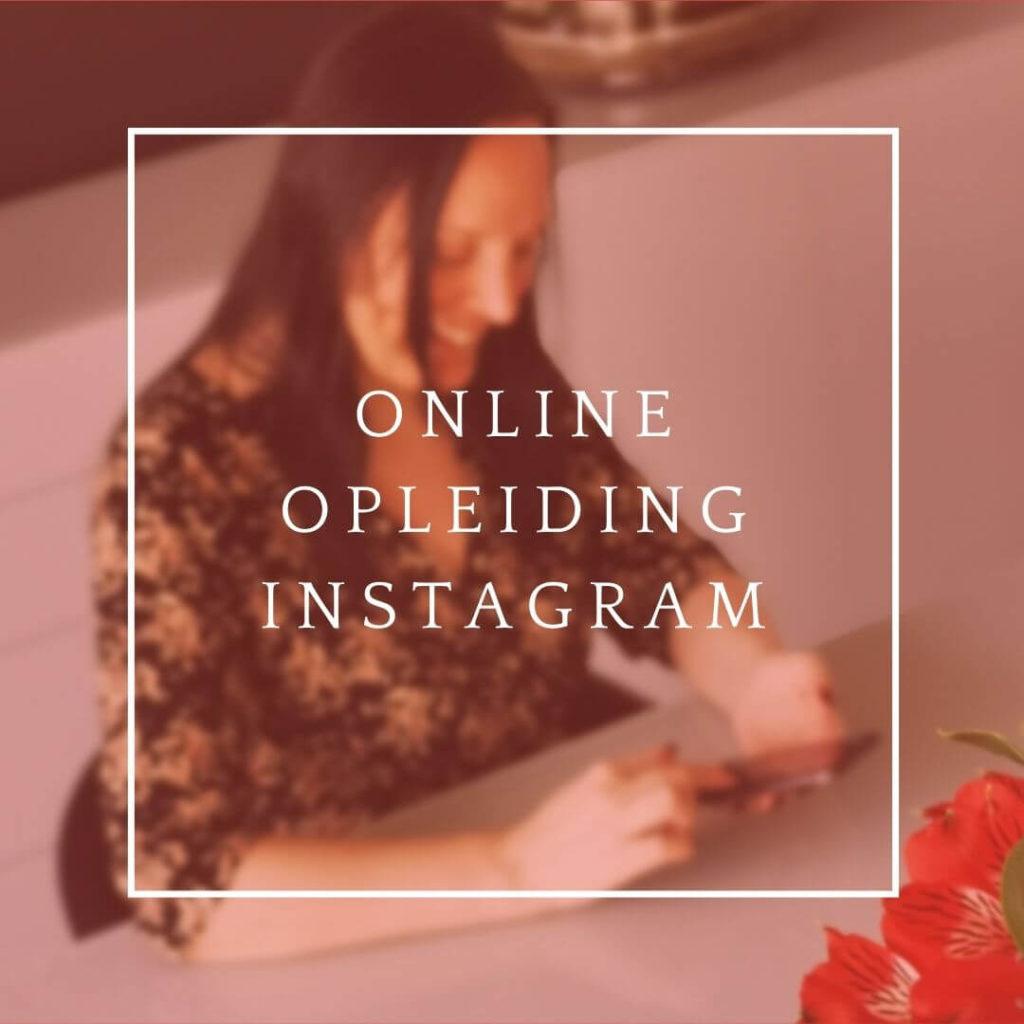 Icommit online opleiding instagram